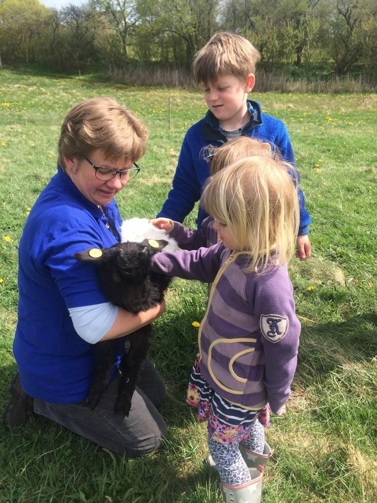 Åben Gedestald var en rigtig hyggelig dag med små og store gæster, der fik gode oplevelser med dyrene.